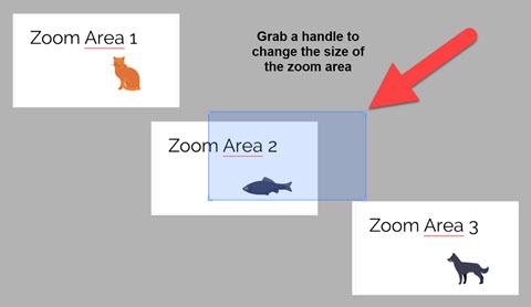Insert zoom area for Prezi Next path